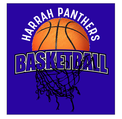 BASKETBALL TORN NET