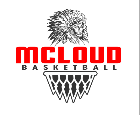 DTG BASKETBALL WITH NET